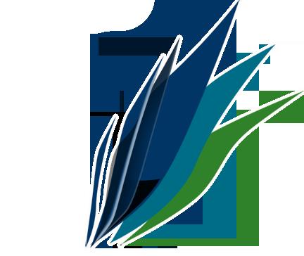 Diseño Web Punta Arenas